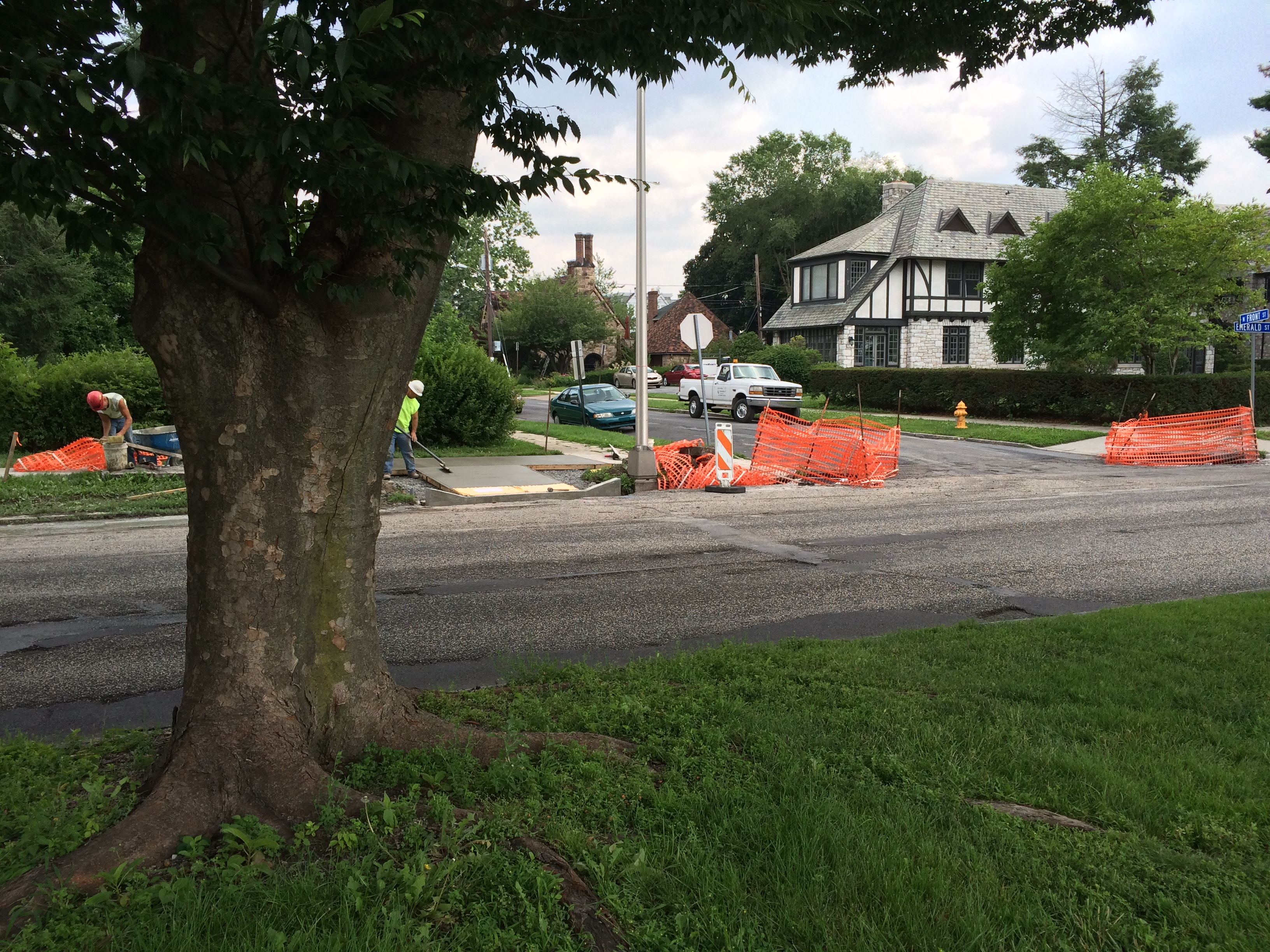 Mayor, Penndot: No Meeting On Front Street Trees Patriotexpressus Gorgeous  How To Write